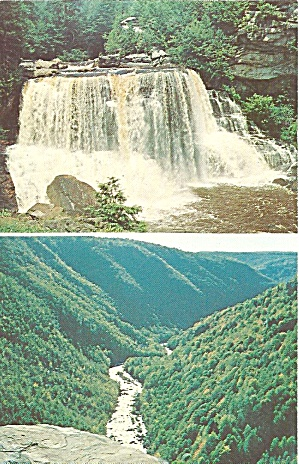 Blackwater Falls West Virginia Postcard p31746 (Image1)