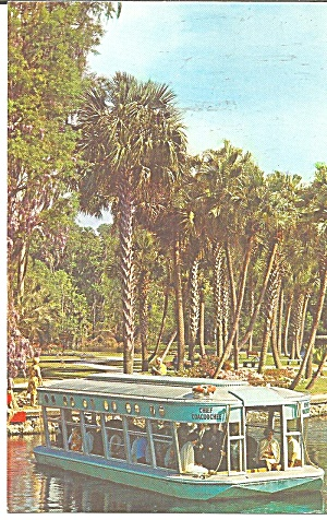 Silver Springs Florida Glass Bottom Boat P31757