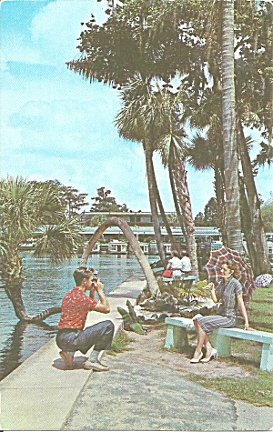 Silver Springs Florida Glass Bottom Boat Crooked Palm P31758