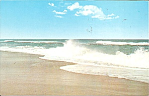 Outer Banks,North Carolina,  Surf and Beach (Image1)