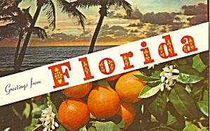 Florida Beach Scene and Oranges p31945 (Image1)