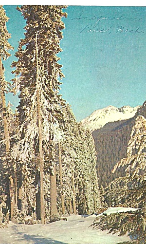 Snoqualmie Pass Summit, Washington (Image1)