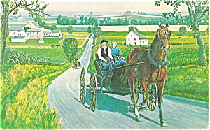 Amish Courting Carriage Postcard p3198 (Image1)