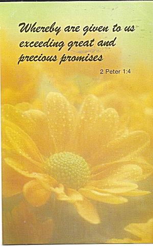 Bible Verse 2 Peter 1:4 (Image1)