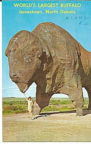 Jamestown North Dakota World s Largest Buffalo p32059 (Image1)