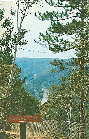 Grand Canyon of Pennsylvania From Nature Trail p32063 (Image1)