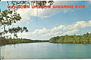 Suwannee River Florida Postcard p32071 (Image1)