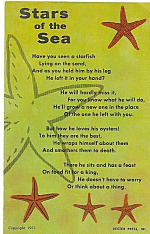 Starfish Words to Stars of the Sea p32088 (Image1)