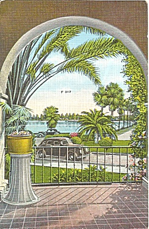 Scenic View  in Florida  Vintage Automobile Palms p32093 (Image1)