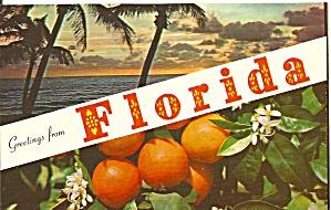 Florida Beach Scene and Oranges  on Tree p32114 (Image1)