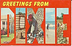 DIXIE Big Letter  Modern Postcard (Image1)