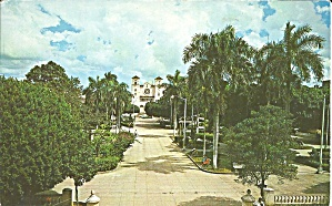 Puerto Rico Lovely Palms And Church Of Caguas P R P32236