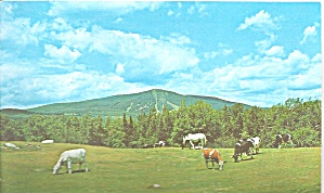 Bromley Mountain Vermont Pastoral Scene p32260 (Image1)