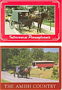 Amish Buggy Postcard Lot Of 2 P3228