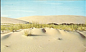 Outer Banks of North Carolina Sand Dunes (Image1)
