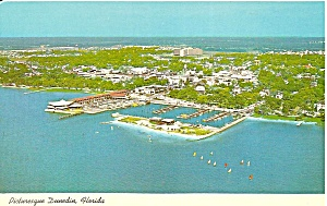 Dunedin Florida Aerial View p32558 (Image1)