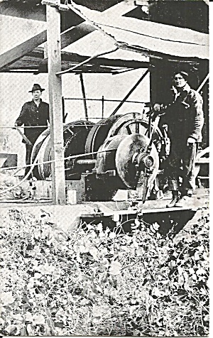 Logging in Washington State Donkey Engine (Image1)
