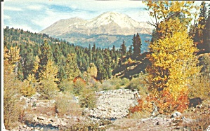 Mt Shasta California Autumn Foliage P32902
