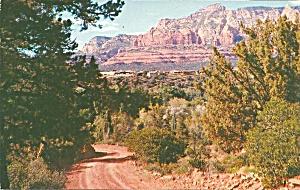 Sedona AZ Desert and Ponderosa Pine p32910 (Image1)