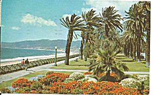 Santa Monica, CA Palisades Park (Image1)