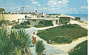 Marineland Florida  Beautiful Gardens p33265 (Image1)