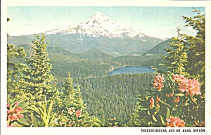 Mt Hood and Lost Lake Oregon p33274 (Image1)