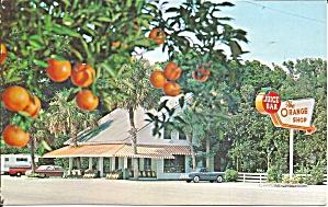 Citra Florida The Orange Shop p33295 (Image1)