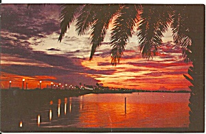 Beautiful Florida Sunset Over Water Palms P33359