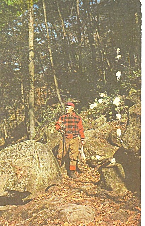 Hunting in the Poconos PA Postcard p33496 (Image1)