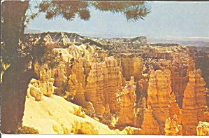 Bryce Canyon National Park UT postcard p33567 (Image1)