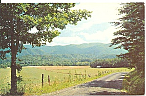 Great Smoky Mountain National Park  postcard p33568 (Image1)