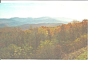 Shenandoah National Park Va Postcard P33599