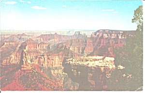 Grand Canyon National Park Az Postcard P35602