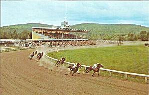 Hancock MA Berkshire Downs Horse Racing P33864 (Image1)