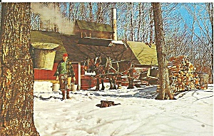Maple Sugar Time In Vermont P33866