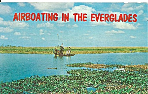 Airboating In The Everglades P33903
