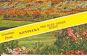 Greetings From Kentucky The Blue Grass State P33934
