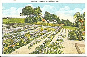 Lancaster PA Barrose Terrace p34000 (Image1)