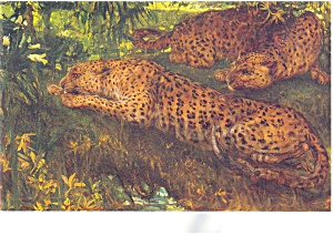 The Ambush, Painting by Swan Postcard (Image1)
