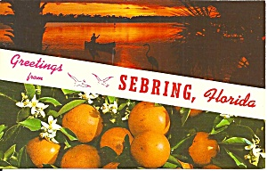 Sebring Florida Oranges And Sunset P34162