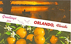 Orlando Florida Oranges And Sunset P34163