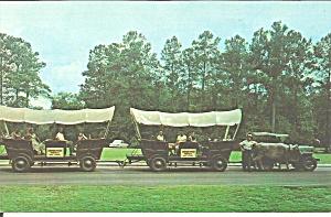 White Springs FL Conestoga Wagon Train p34213 (Image1)