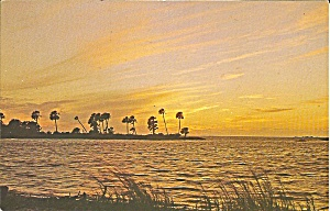 Florida Waterway, Palms at Sunset p34216 (Image1)