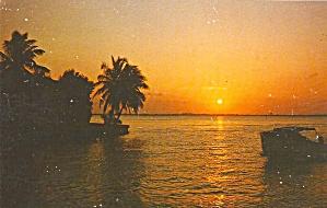 Florida Sunset  p34217 (Image1)