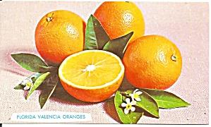 Florida Valencias Oranges Mar-July p34223 (Image1)