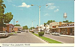 Zephyrhills FL  Street Scene p34235 (Image1)
