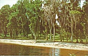 Lake Wales FL Lake Front Scene p34295 (Image1)