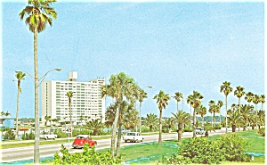 Clearwater Fl Causeway Postcard P3451 Cars 60s