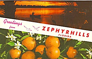 Zephyrhill FL Greetings p34548 (Image1)