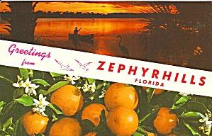 Zephyrhill FL Greetings p34548 (Image1)